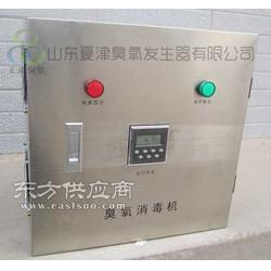 食品厂挂壁式臭氧发生器图片