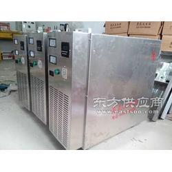 不锈钢移动式臭氧发生器图片