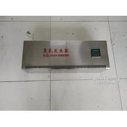 挂壁式臭氧消毒机/食品车间臭氧发生器图片