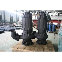 污水提升泵|污水泵|350WQ1100-22-132污水泵图片