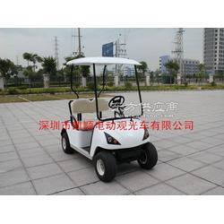 电动高尔夫球车2座图片