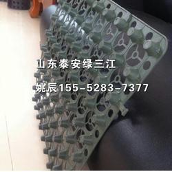 排水板厂家、车库排水板厂家、山东绿三江(认证商家)图片