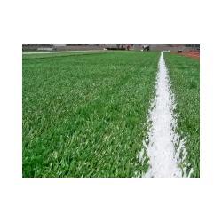 人造草坪单价,凌风体育(已认证),人造草坪图片