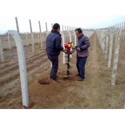 植树挖坑机哪种好,安邦机械,河北植树挖坑机图片