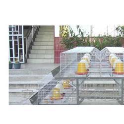 鸡笼,供应多层肉鸡笼,肉鸡笼架子尺寸图片