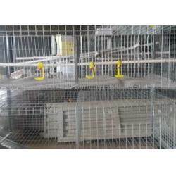 鸡笼子厂家供应(图)_肉鸡笼子种类_鸡笼图片