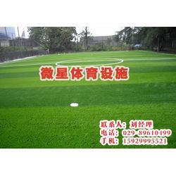 人造草坪供应,铜川人造草坪供应,西安微星体育(优质商家)图片
