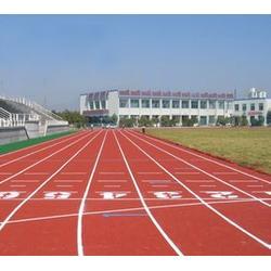 渭南塑胶跑道施工、陕西卫星体育(在线咨询)、塑胶跑道施工图片