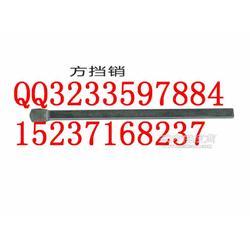链轮组件65SSZ010101/厂家报价链轮组件65SSZ010101直销图片