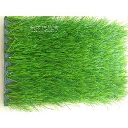 厂家火爆款标准11人比赛足球场 铺设专用塑料草坪图片