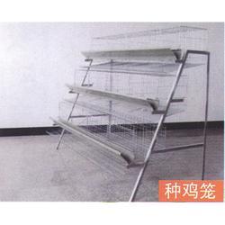 不锈钢笼具、煜鑫畜牧(在线咨询)、咸宁不锈钢笼具图片