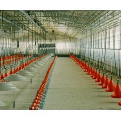 养鸡设备、养鸡设备、煜鑫鸡笼加工厂图片