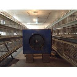 温州养鸡设备、养鸡设备、煜鑫畜牧(查看)图片