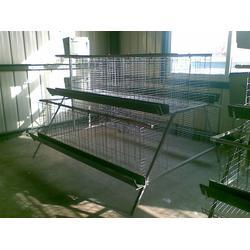 东营笼具厂家销售、笼具厂家、煜鑫畜牧(查看)图片