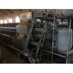 山东自动化上料机,胶南自动化上料机,煜鑫畜牧(查看)图片