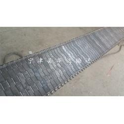 海城链板,华运输送(优质商家),宁津链板生产商图片