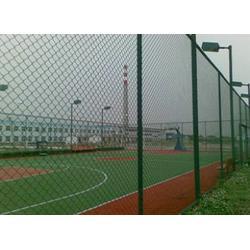 球场围栏网生产商-球场围栏网-贝纳丰丝网(查看)图片