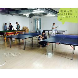 红双喜小彩虹乒乓球桌 折叠乒乓球桌图片