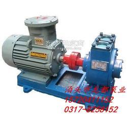 80YPB-60移动式自吸滑片泵-龙都泵业一流品质图片