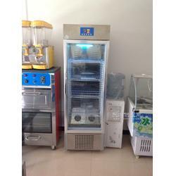 商用酸奶机 海蓝商用酸奶机 小型商用酸奶机图片