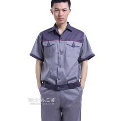 夏季短袖纯棉工作服,夹克衫,劳保服图片