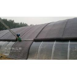 新型的温室大棚建造设计案例-日光温室建造费用图片
