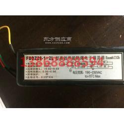 FBDZ28-2x2L高效节能防爆电子镇流器 防爆电子镇流器造价图片