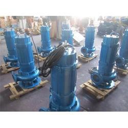 南宁铸铁WQ污水提升泵-辰龙水泵直销-铸铁WQ污水提升泵参数图片