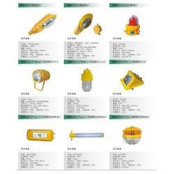 盛欧测控、盛欧电气SOCK防爆平台灯、盛欧电气SOCK图片