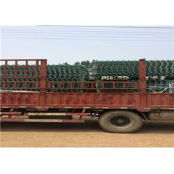 荆州小区围墙锌钢护栏单价多少钱,英环丝网(优质商家)图片
