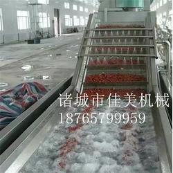 菠萝清洗线-佳美食品机械(在线咨询)菠萝清洗线哪里有卖图片