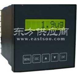 水中溶解氧检测仪 DOG-5091溶解氧仪图片