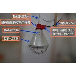 猪场保温灯厂家_三渡照明_大功率养殖灯厂家图片