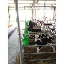 养殖保温灯罩,加温保温灯,三渡照明图片