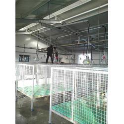 三渡照明(图)、鸡仔养殖灯采购、取暖养殖灯罩采购图片