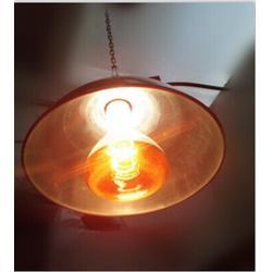 取暖保温灯|保温灯|三渡照明专业生产保温灯(查看)图片