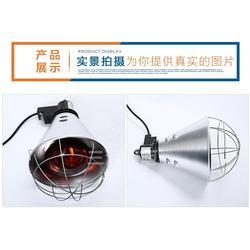 远红外线保温灯厂家,三渡照明(在线咨询),猪崽保温灯罩保温灯图片