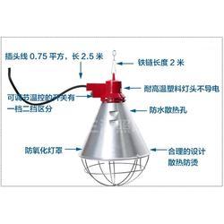 三渡照明(图)_仔猪保温灯罩_养鹅养殖灯罩价格