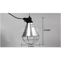 养鸭取暖灯|猪用保温灯罩|三渡照明(推荐商家)图片