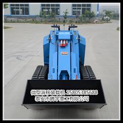 龙岩市微型叉车、腾宇重工(在线咨询)、4微型叉车图片