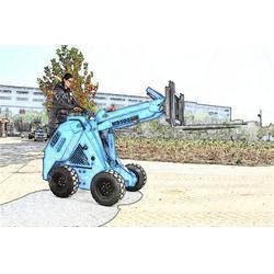 新疆滑移装载机、腾宇重工、滑移装载机怎么卖图片