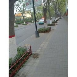 园林护栏设计生产_潍坊园林护栏设计生产_丽景环卫(优质商家)图片