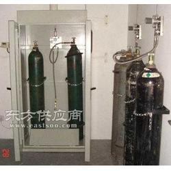 双瓶气瓶柜,全钢气瓶柜,带报警装置气瓶柜图片