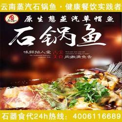 创业赢(图)_云南石锅鱼 团购_云南石锅鱼图片