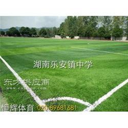 塑料地板人造草皮假草幼儿园草坪、人造草、恒辉体育设图片