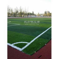 塑料地板人造草坪施工、人造草坪、恒辉体育(多图)图片