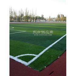 塑料地板幼儿园婚礼楼顶阳台草坪 人造草坪 恒辉体育图片