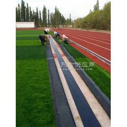 塑料地板元江哈尼族彝族傣族自治县人造草_恒辉体育设图片