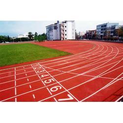 国人健身器材(图)_塑胶跑道_河南塑胶跑道图片