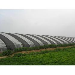 连栋温室大棚建设|自贡温室大棚建设|誉诚农业设施图片